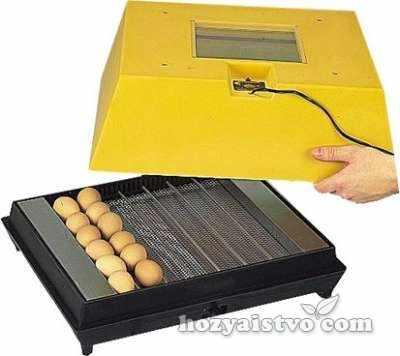 egg incubator brinsea polyhatch