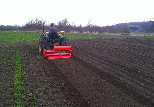 Прикатывание почвы