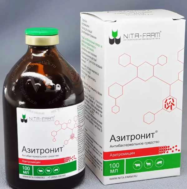 Азитронит - верное решение в борьбе с инфекцией у поросят