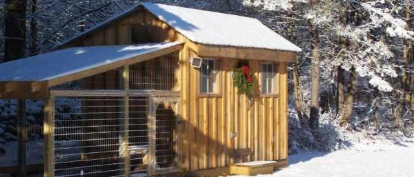 Бройлеры чувствительны к перепадам температур, поэтому в курятнике заделывают щели, половые и стенные дыры, через которые выходит тепло