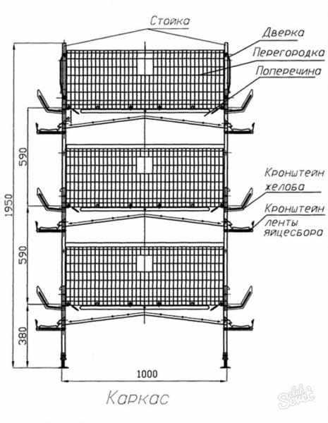 Простая клетка для перепелов: пошаговая инструкция для выполнения работ своими руками, размеры и чертежи