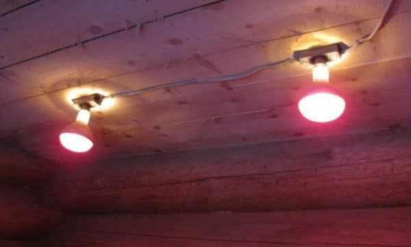 КПД инфракрасных ламп достигает 98%, а тепловая энергия равномерно распределяется по всей площади помещения