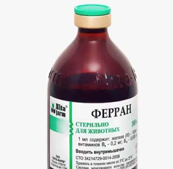Раствор Ферран предотвращает и лечит железодефицитную анемию сельскохозяйственных животных и собак